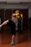 Mixed Martial Arts Fighter Ready To Fight Royalty Free Stock Photos