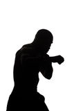 Mixed Martial Arts Fighter Ready To Fight Stock Images