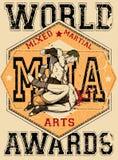 Mixed martial arts Royalty Free Stock Image