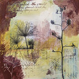 Mixed media abstract painting with seedheads. Mixed media painting with photographic elements from nature and handwritten text in ink. Transparent layers of Stock Photos