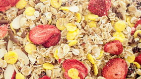 Mixed muesli Stock Photography