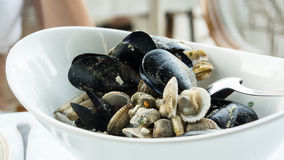 Mixed mussels Royalty Free Stock Image