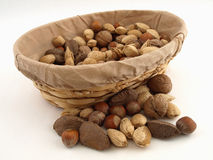 Mixed Nut Harvest Royalty Free Stock Images