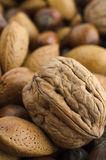 Mixed Nut Selection with Walnut in Foreground Royalty Free Stock Image