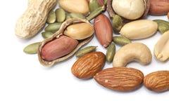 Mixed nut  Royalty Free Stock Photo