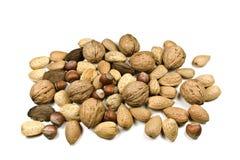Free Mixed Nuts Royalty Free Stock Image - 16979406