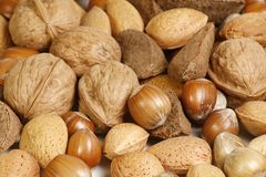 Mixed nuts. Selection of walnuts almonds, brazil nuts and hazelnuts in shells Royalty Free Stock Photography