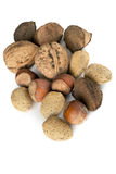 Mixed Nuts Stock Images
