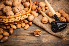 Free Mixed Nuts Stock Image - 28878891