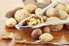 Free Mixed Nuts And Nut Cracker Royalty Free Stock Image - 19301086