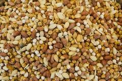 Mixed nuts close up Stock Photos