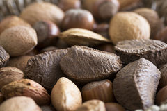 Mixed Nuts Close Up Stock Photography