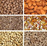 Nuts collection. Mixed nuts, a collection of six photo Stock Images
