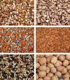 Nuts collection. Mixed nuts, a collection of six photo Stock Photography
