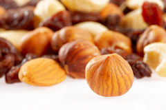 Mixed nuts and dried fruits Royalty Free Stock Image