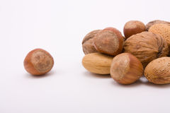 Mixed Nuts Gang Stock Photography