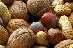 Mixed nuts with hazelnut, peanut and walnut, closeup shot Royalty Free Stock Image