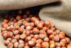 Of mixed nuts on hessian sacking Stock Images