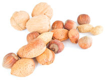 Mixed nuts isolated on white. Stock Photography