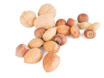 Mixed nuts isolated on white. Stock Photos