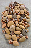 Mixed nuts on jute sack Royalty Free Stock Photos