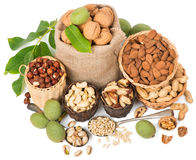 Mixed nuts with leaves of walnut, top view Stock Image