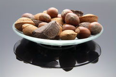 Mixed Nuts on Plate. With Reflection Royalty Free Stock Images