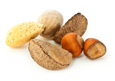 Mixed Nuts in the Shell Royalty Free Stock Images