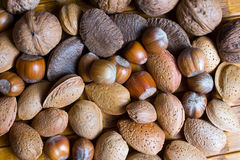 Mixed nuts in the shell Royalty Free Stock Image