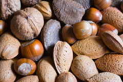 Mixed nuts in the shell Stock Image
