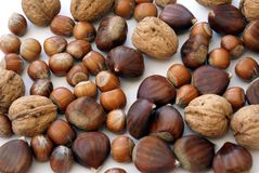 Mixed nuts of walnuts, chestnuts, and hazelnuts Stock Photos