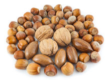 Mixed nuts. On a white background Royalty Free Stock Photo