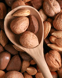Mixed nuts and a wooden spoon Stock Photography