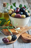 Mixed olives Stock Images
