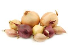 Mixed onions Stock Photo