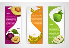 Mixed organic fruits banners collection. Mixed natural organic sweet fruits vertical banners collection of apple plum and banana for cafe dessert menu design Royalty Free Stock Image