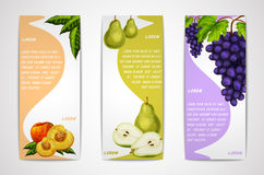 Mixed organic fruits banners collection. Mixed natural organic sweet fruits vertical banners collection of pear peach and grapes for cafe dessert menu design Stock Photo