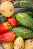 Mixed organic vegetables in bowl Royalty Free Stock Photo