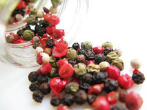 Mixed pepper. Grains close up Royalty Free Stock Photo
