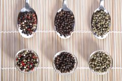 Mixed pepper composition Stock Images