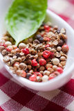 Mixed pepper grains Stock Images