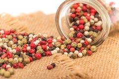Mixed peppercorns Stock Photos