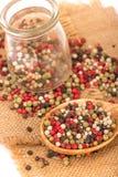 Mixed peppercorns Royalty Free Stock Photos