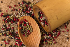 Mixed peppercorns Royalty Free Stock Photo