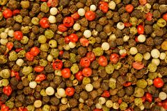 Mixed peppercorns background. Black, red, green, white Royalty Free Stock Images