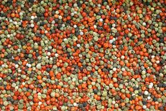 Peppercorns mixed. Mixed peppercorns in bulk texture background Royalty Free Stock Photography