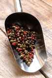 Mixed peppercorns for cooking spice Stock Photography