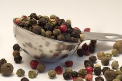 Mixed Peppercorns on Spoon Stock Image