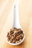Mixed peppercorns in  spoon Stock Image