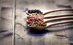 Mixed peppercorns in a wooden spoon Stock Images